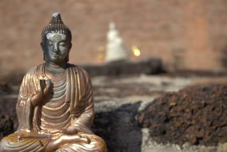 Ayutthaya historical park buddha statue